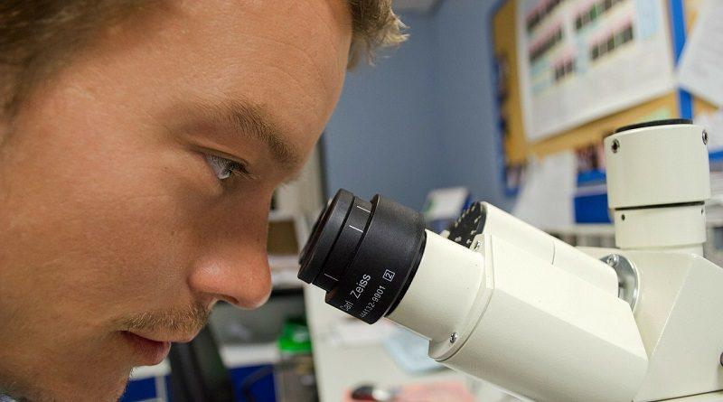 H1N1 Virüsünü 5 Dakikada Tespit Edebilen Taşınabilir Bir Cihaz Geliştirildi