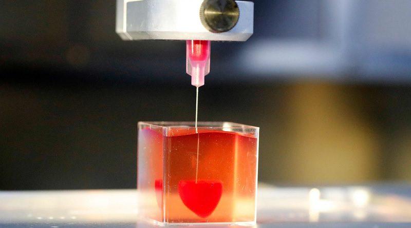 3D Yazıcı İle Yapay Organ Üretimi