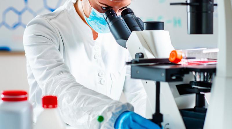 Gen Klonlamak İçin Vektör: Plazmitler